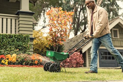Fall Is Prime Time for Lawn Care