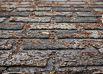 6 Signs Your Home Needs a New Roof